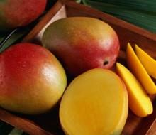 Receta de jugo de mango