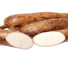 Mandioca: el alimento del futuro, autóctono del nordeste