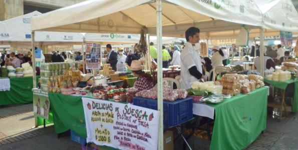 Mercados vivos