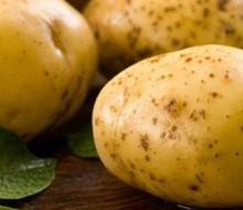Por qué las patatas Bonnotte son tan preciadas